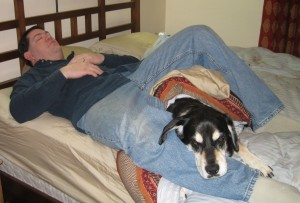 Dog Sleeping on Bed with Man
