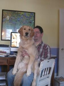 Golden Retriever Dog on a Man's Lap