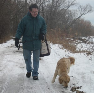 Man and Golden Retriever Walking on Leash