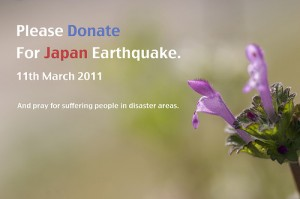 Donate for Japan Earthquake