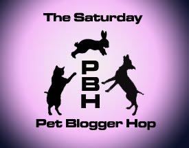 Saturday Pet Blogger Hop