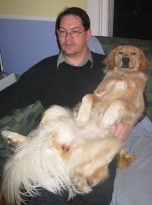 Golden Retriever sitting on man's lap