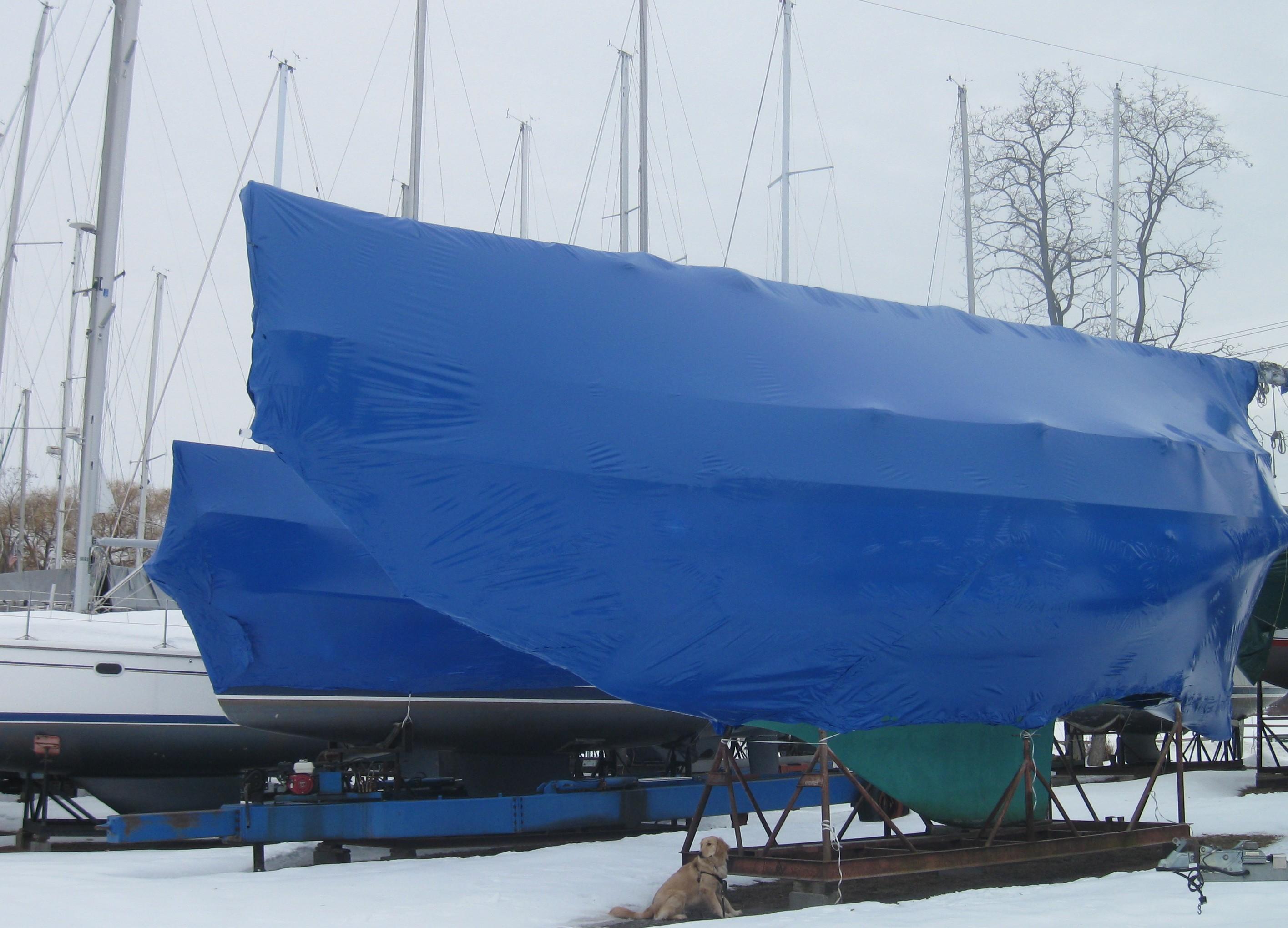 Golden Retriever under sail boat