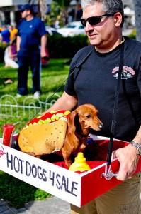 Wiener Dog Dachshund Hot Dog Vendor Costume by Ben Murray on Flickr.com