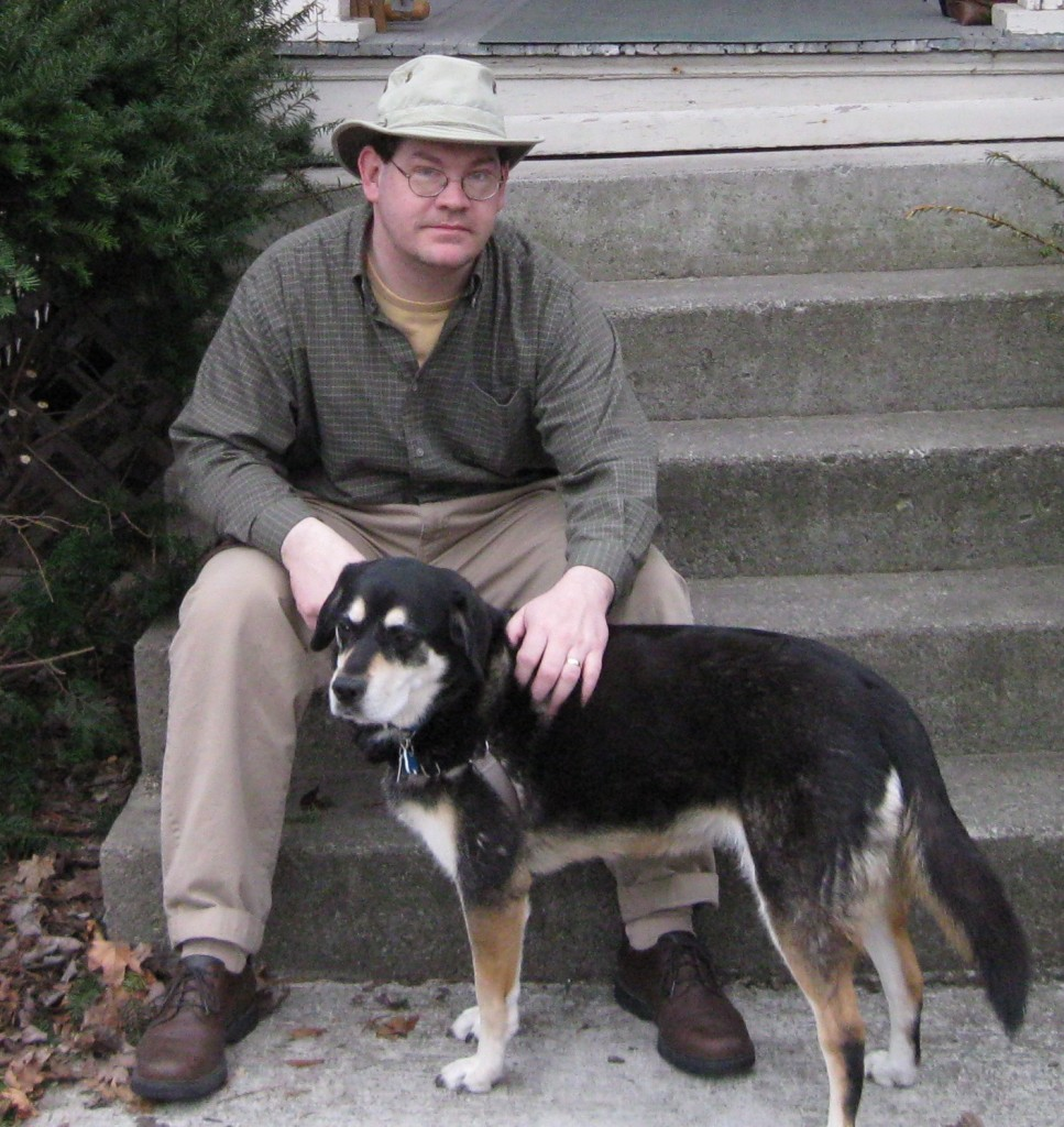 mixed breed dog hound