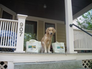 Honey the Golden Retriever with BlogPaws 2011 and Spooky Buddies swag