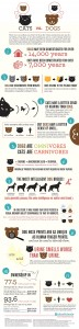Cats vs Dogs infographic