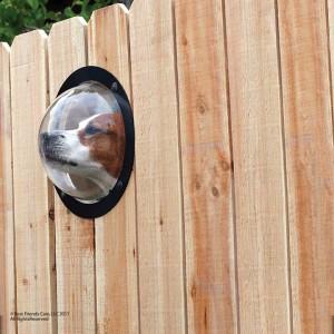 Pet Peek pet window