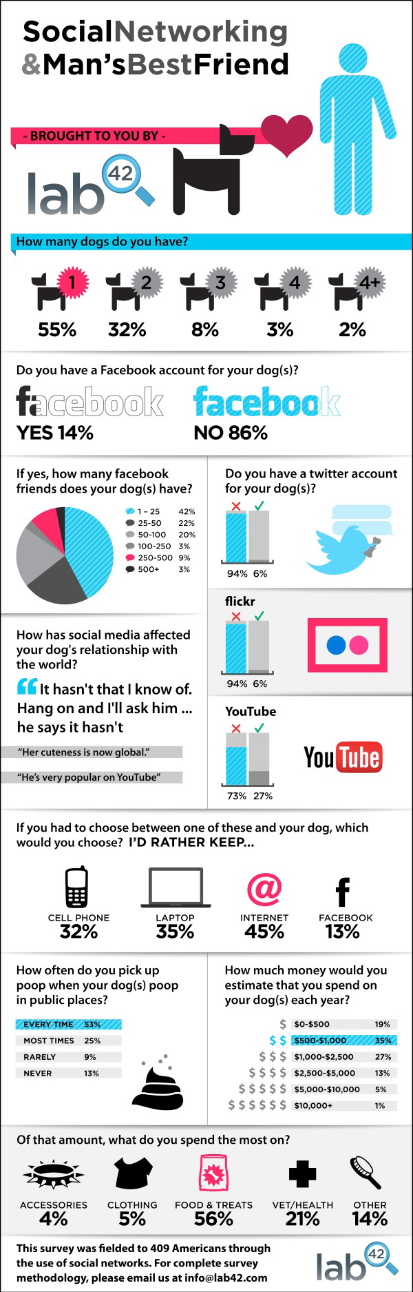 Social Media and Dogs Infographic from Lab 42