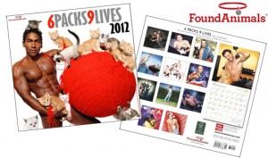 6 Packs 9 Lives Calendar