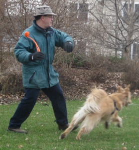 Man throwing ball to Golden Retriever.