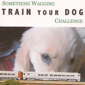 Something Wagging Train Your Dog Challenge