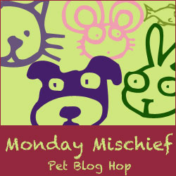 Monday Mischief Pet Blog Hop