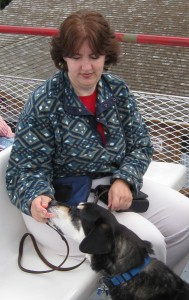 Mixed breed dog on boat in St. Lawrence River