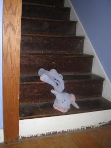 Purple Stuffed Elephant on the steps