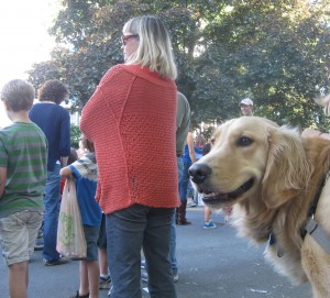 Golden Retriever at Ithaca Festival Parade
