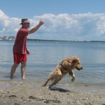 Save Time Walking the Dog – Don't Try This At Home