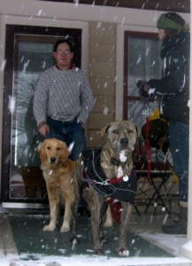 Honey the Golden Retriever of Something Wagging This Way Comes says goodbye to Fozzie of Peaceful Dog Blog.