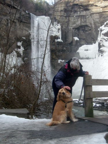 Posing Honey the Golden Retriever at Taughannock Falls.