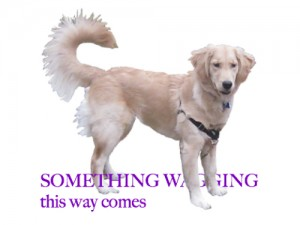 This is a sample logo for Something Wagging that features an adult Golden Retriever straddling the blog name.