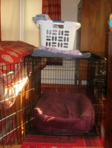 The dog crate in the bedroom has laundry on top.