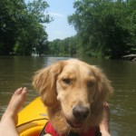 Dog Asks Why Does a Kayak Smell Like Toes – Wordless Wednesday