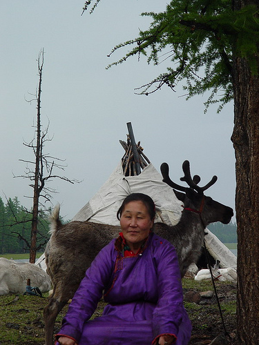 Dukha woman with reindeer in northern Mongolia - setting for The Horse Boy.