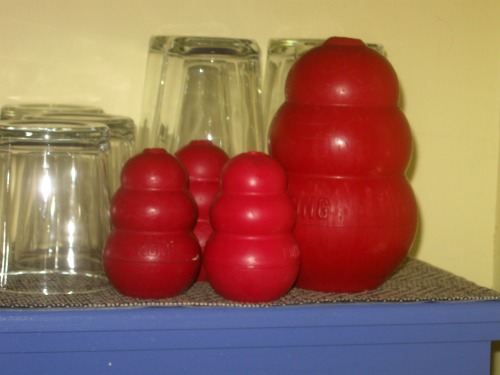 A close up of Kongs on the dish shelf.