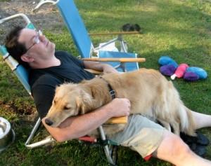 Honey the Golden Retriever takes a nap on a lap.