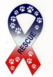 An animal rescue ribbon magnet.