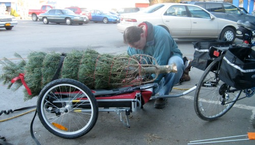 Mike ties the Christmas tree down to the bike cart for the trip home.