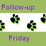 Something Wagging Readers Are The Best – Follow Up Friday