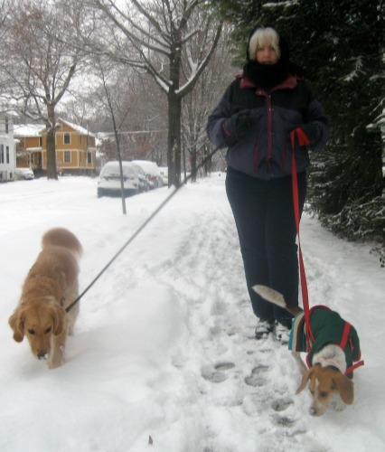Pet blogger Pamela out for a walk.