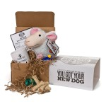 You got your new dog kit from Uncommon Goods.