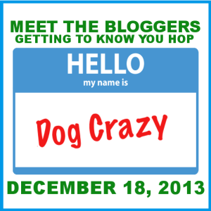 Meet the bloggers blog hop