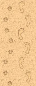 sandyprints_1.5.png