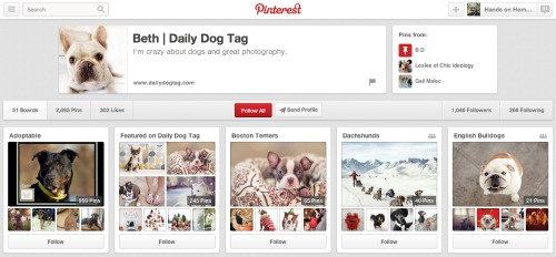 Daily Dog Tag on Pinterest