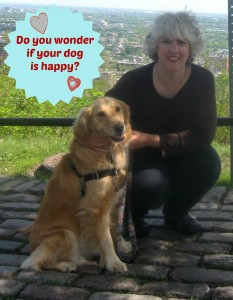Does Honey the golden retriever look happy?