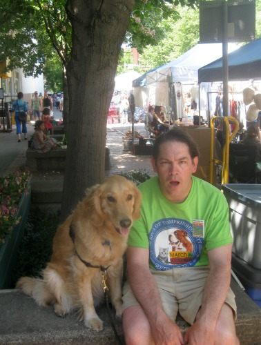 Honey the golden retriever at the Ithaca Festival.