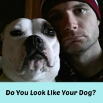 Do You Look Like Your Dog? The Experiment