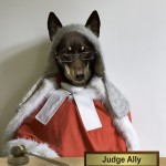 Do We Always Have To Judge?