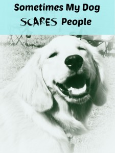 My golden retriever dog sometimes scares people.