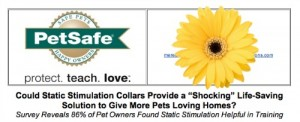 PetSafe shock collar press release screen shot.
