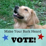 Why People Who Love Animals Must Vote