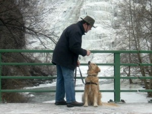 Honey the golden retriever with Mike at Ithaca Falls.