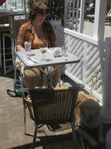 Honey the golden retriever dines outdoors in Cape May.