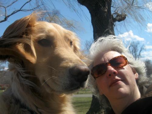 Honey the golden retriever in a wind-blown selfie with Pam.