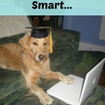 If Dogs Are So Smart…