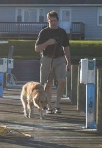 Honey the golden retriever sniffs bird poop on her walk at the marina.