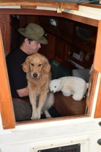 Honey the golden retriever is lifted out of the cabin of the sailboat.